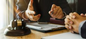 interesting facts about being a family lawyer